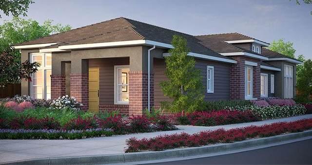 690 Sunnyslope Rd, Petaluma, CA 94952 (MLS #ML81829768) :: Compass