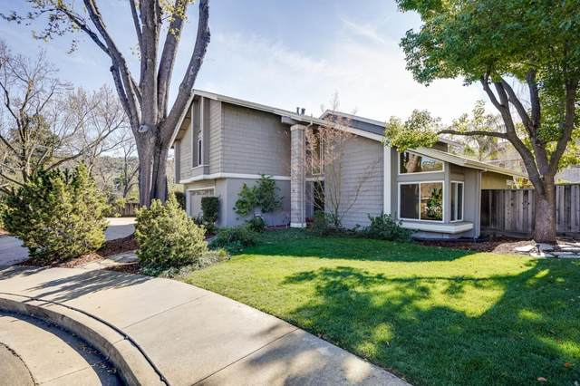 6075 Marla Ct, San Jose, CA 95124 (#ML81831282) :: The Goss Real Estate Group, Keller Williams Bay Area Estates