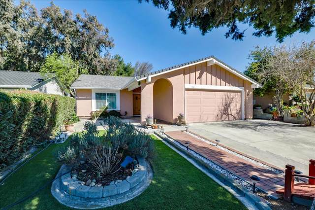 1867 Norseman Dr, San Jose, CA 95133 (#ML81831286) :: The Goss Real Estate Group, Keller Williams Bay Area Estates