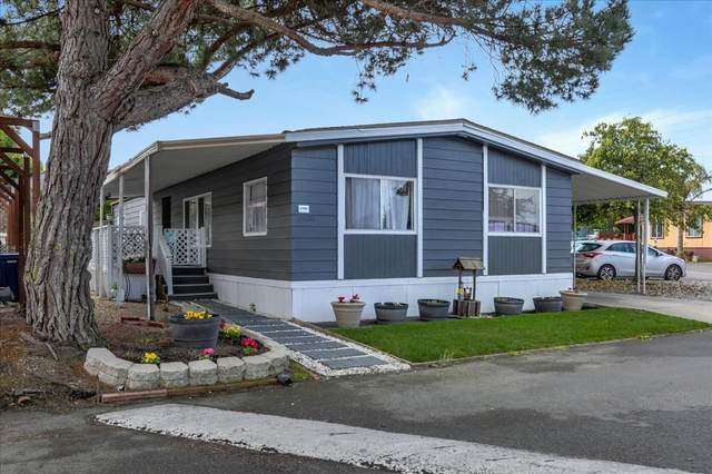 13600 Monte Del Sol 131, Castroville, CA 95012 (#ML81831605) :: Alex Brant