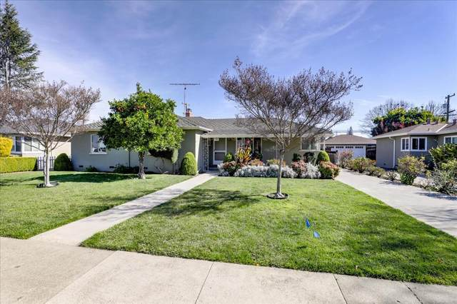880 S Clover Ave, San Jose, CA 95128 (#ML81831606) :: RE/MAX Gold