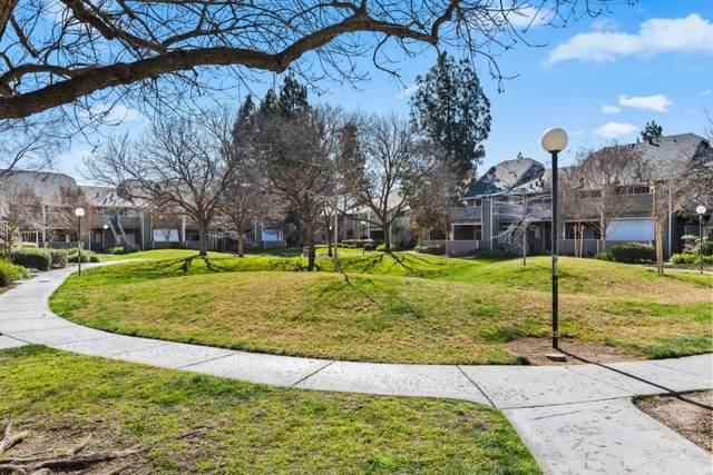 252 Shadow Run Dr 86, San Jose, CA 95110 (#ML81831885) :: Intero Real Estate