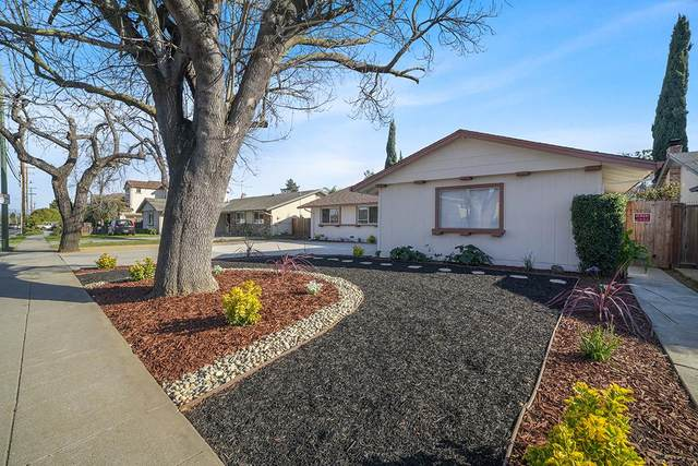 3978 W Campbell Ave, Campbell, CA 95008 (#ML81832023) :: Strock Real Estate