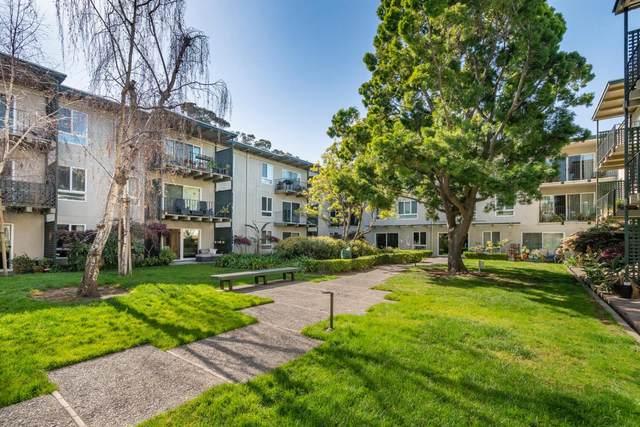 803 N Humboldt St 206, San Mateo, CA 94401 (#ML81832755) :: Olga Golovko