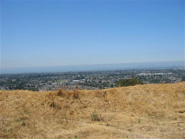 00 Page St, San Leandro, CA 94578 (#ML81833187) :: Live Play Silicon Valley