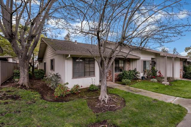 5270 Cribari Hts, San Jose, CA 95135 (#ML81834641) :: The Sean Cooper Real Estate Group