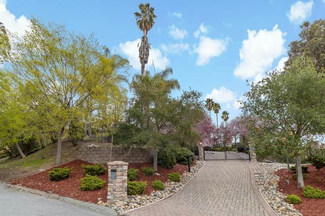 28437 Christopher Ln, Los Altos Hills, CA 94022 (#ML81834768) :: Intero Real Estate