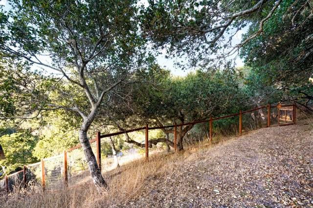 3407 Bartlett Way, Belmont, CA 94002 (#ML81835190) :: The Gilmartin Group