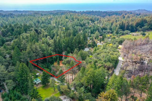 70 Westdale Dr, Santa Cruz, CA 95060 (#ML81835541) :: The Sean Cooper Real Estate Group