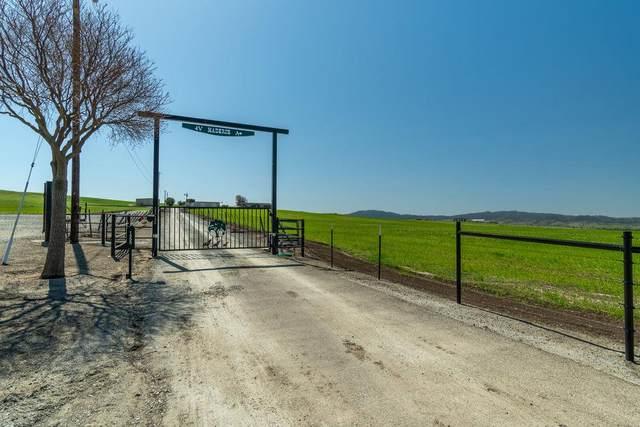 1555 Santa Ana Valley Rd, Hollister, CA 95023 (#ML81836395) :: The Realty Society