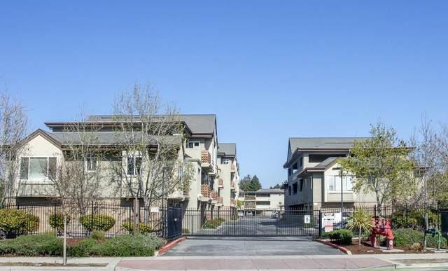308 River St B16, Santa Cruz, CA 95060 (#ML81836586) :: Strock Real Estate