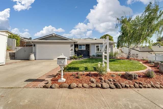 704 Braxton Dr, San Jose, CA 95111 (#ML81836778) :: The Sean Cooper Real Estate Group