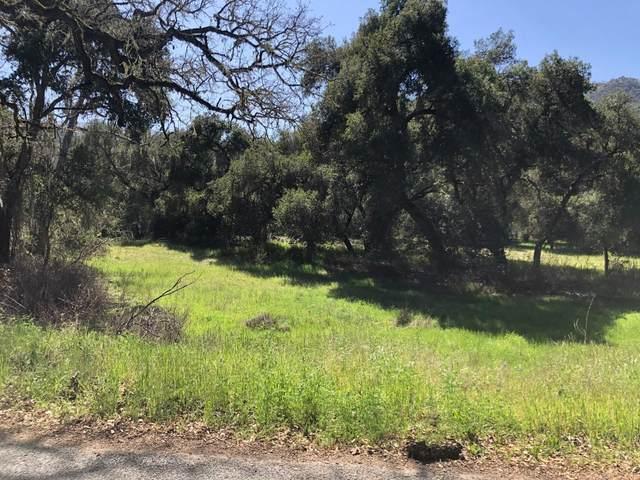 0 Cachagua Rd, Carmel Valley, CA 93924 (#ML81836885) :: The Realty Society