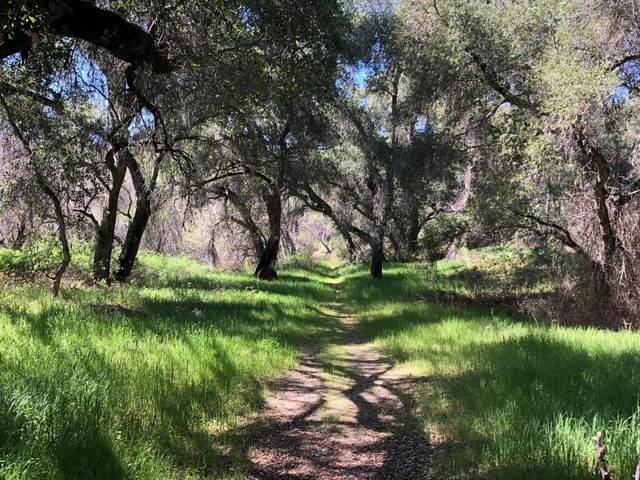 0 Cachagua, Carmel Valley, CA 93924 (#ML81836895) :: The Realty Society