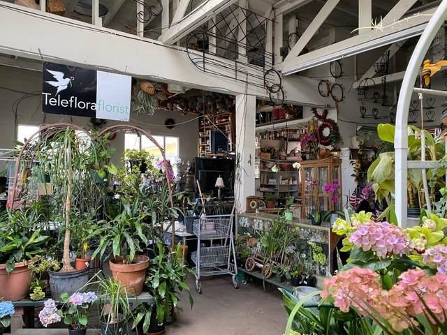 3878 El Camino Real, Palo Alto, CA 94306 (#ML81836941) :: The Gilmartin Group