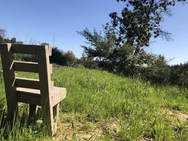 0 Little Buck Rd, Boulder Creek, CA 95006 (#ML81837368) :: Strock Real Estate