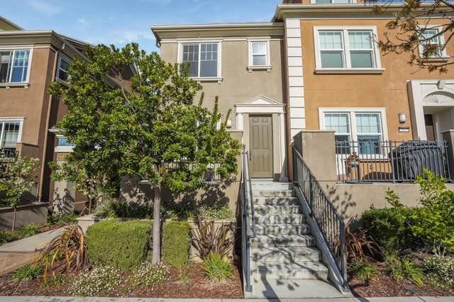 2913 Baze Rd, San Mateo, CA 94403 (#ML81837988) :: Strock Real Estate