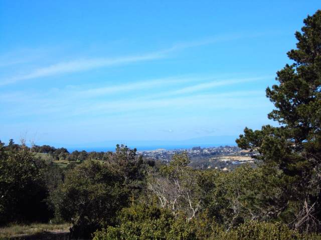 0 Monterra Ranch (Lot 1), Monterey, CA 93940 (#ML81838111) :: The Sean Cooper Real Estate Group