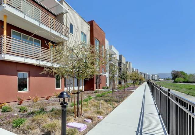 330 Riesling Ave 10, Milpitas, CA 95035 (#ML81838143) :: The Sean Cooper Real Estate Group