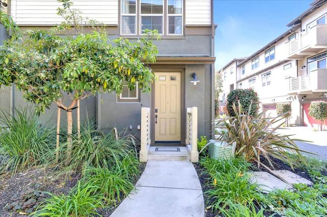 420 Chapman Ln, San Mateo, CA 94403 (#ML81838193) :: Strock Real Estate