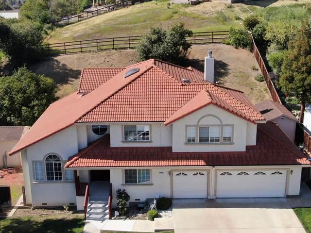 3445 Kaylene Dr, San Jose, CA 95127 (#ML81838208) :: Intero Real Estate