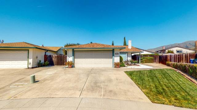 765 Flume Ct, Milpitas, CA 95035 (#ML81838443) :: Strock Real Estate