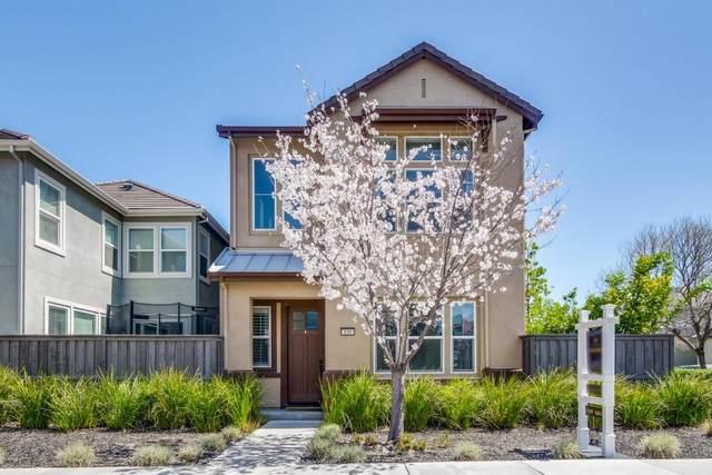 838 Blue Opal Dr, San Jose, CA 95123 (#ML81838475) :: Intero Real Estate
