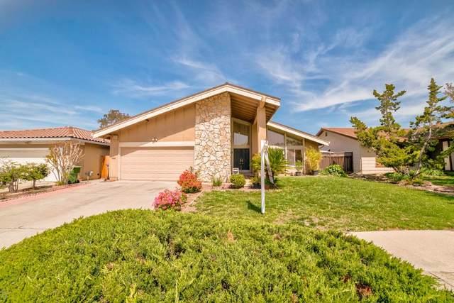 2802 Agua Vista Dr, San Jose, CA 95132 (#ML81838880) :: Intero Real Estate