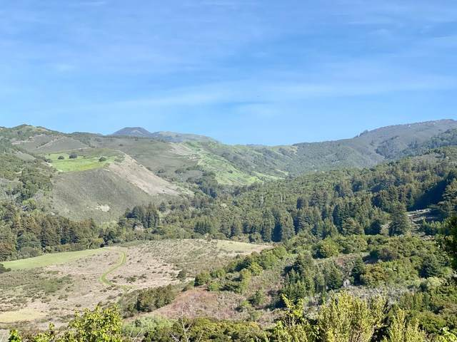 17 Rancho San Carlos Rd, Carmel Valley, CA 93923 (#ML81839005) :: Alex Brant