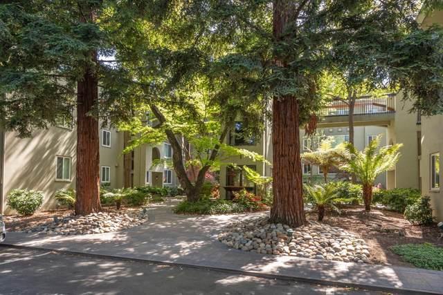 177 N El Camino Real 18, San Mateo, CA 94401 (#ML81839068) :: The Gilmartin Group