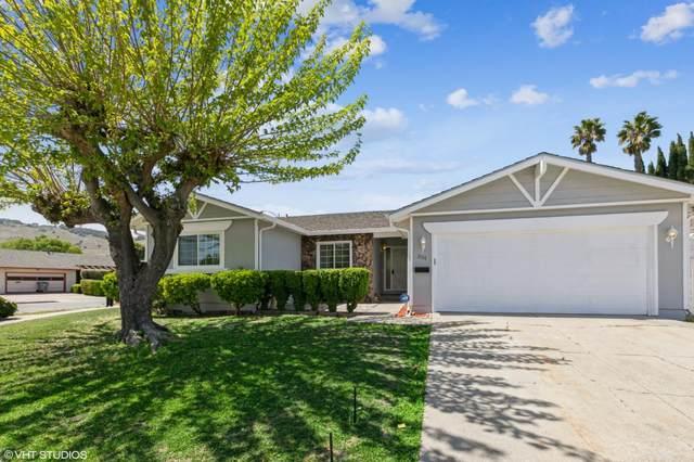 351 Madison Dr, San Jose, CA 95123 (#ML81839140) :: Schneider Estates