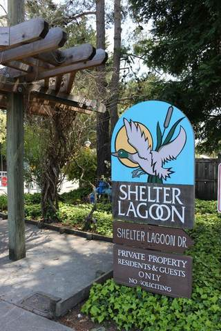 133 Shelter Lagoon Dr, Santa Cruz, CA 95060 (#ML81839244) :: The Sean Cooper Real Estate Group