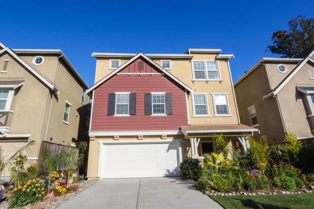 100 Meadowview Ln, Santa Cruz, CA 95060 (#ML81839499) :: The Sean Cooper Real Estate Group