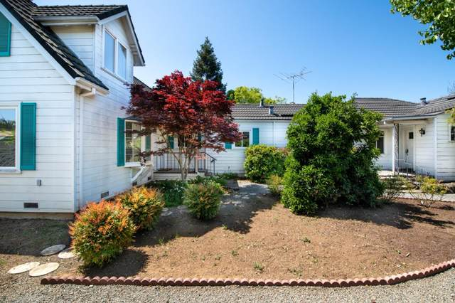 670 Greenview Pl, Los Altos, CA 94024 (#ML81839591) :: The Sean Cooper Real Estate Group