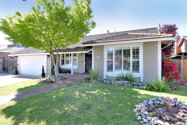 548 Elvis Dr, San Jose, CA 95123 (#ML81839832) :: The Kulda Real Estate Group