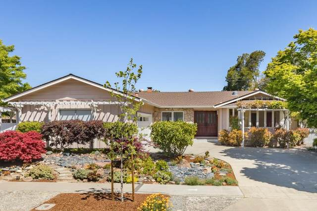 713 Saranac Dr, Sunnyvale, CA 94087 (#ML81840030) :: The Sean Cooper Real Estate Group