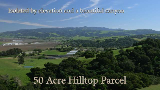 1720-C Searle Rd, San Juan Bautista, CA 95045 (#ML81840477) :: Live Play Silicon Valley