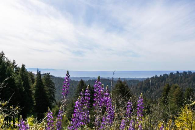 0 Fern Flat, Aptos, CA 95003 (#ML81840717) :: Strock Real Estate