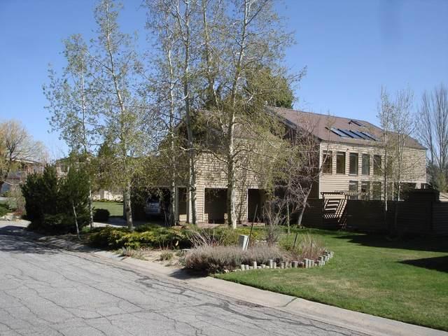 713 Whitney Dr, South Lake Tahoe, CA 96150 (#ML81840807) :: Schneider Estates
