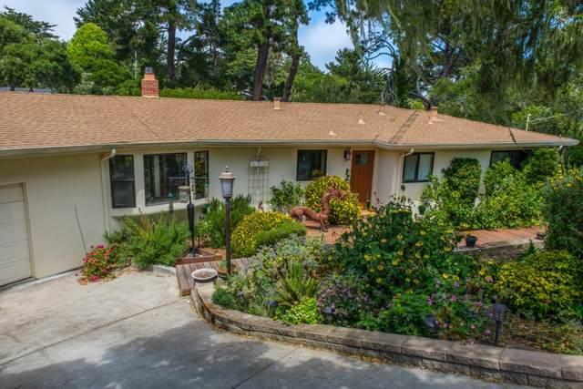 64 Bartolomea Way, Monterey, CA 93940 (#ML81841432) :: Alex Brant
