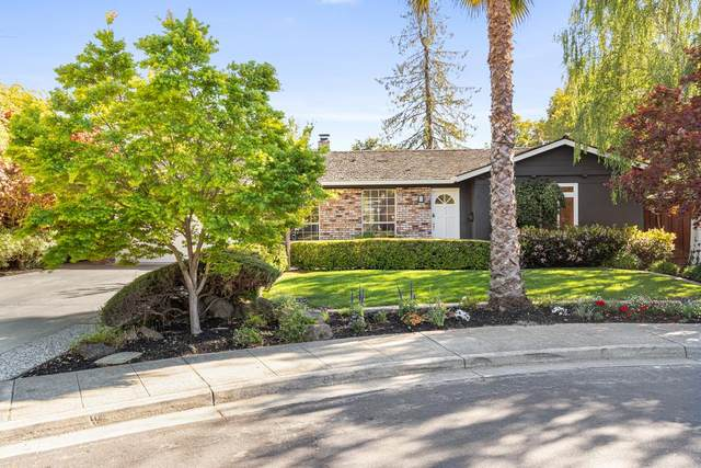 157 Preston Dr, Mountain View, CA 94040 (#ML81842195) :: Robert Balina | Synergize Realty