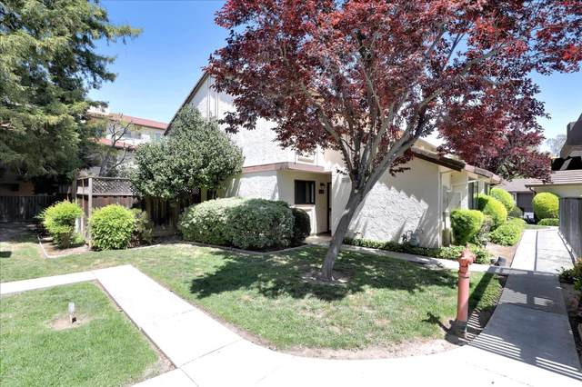 1024 Liebelt Ct, San Jose, CA 95126 (#ML81842367) :: Strock Real Estate