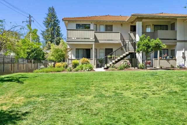 295 Kenbrook Cir, San Jose, CA 95111 (#ML81842693) :: The Goss Real Estate Group, Keller Williams Bay Area Estates