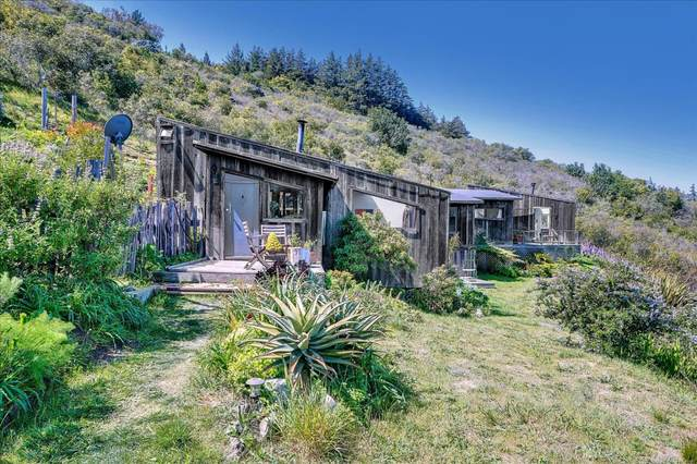 46190 Clear Ridge Rd, Big Sur, CA 93920 (#ML81843055) :: The Goss Real Estate Group, Keller Williams Bay Area Estates