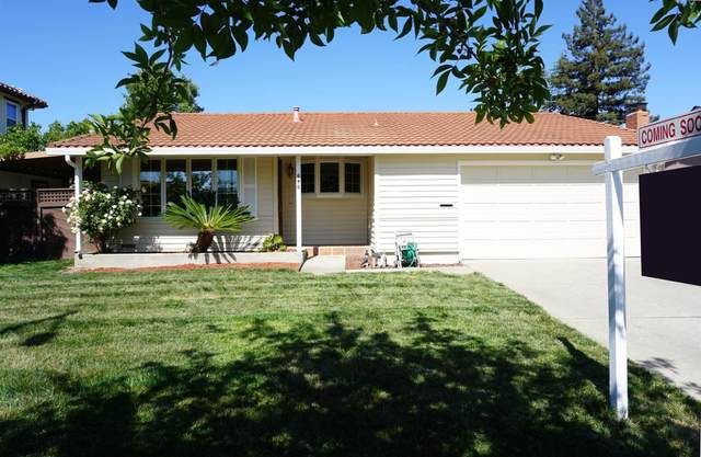 695 Torreya Ave, Sunnyvale, CA 94086 (#ML81843173) :: Real Estate Experts