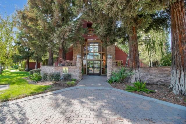 925 Catkin Ct, San Jose, CA 95128 (#ML81843209) :: Real Estate Experts