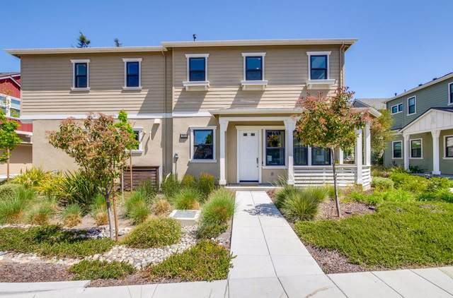 204 Athena Ct, Mountain View, CA 94043 (#ML81843426) :: The Goss Real Estate Group, Keller Williams Bay Area Estates
