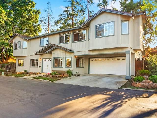 10519 Phil Pl, Cupertino, CA 95014 (#ML81843436) :: Strock Real Estate