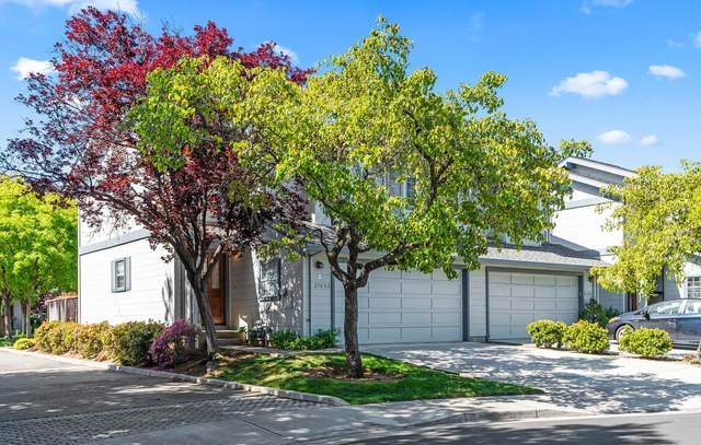21682 Olive Ave, Cupertino, CA 95014 (#ML81843499) :: Strock Real Estate
