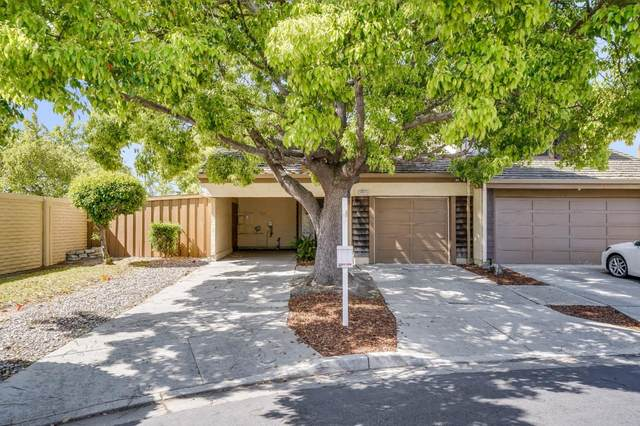 34935 Seal Rock Ter, Fremont, CA 94555 (#ML81843838) :: The Gilmartin Group